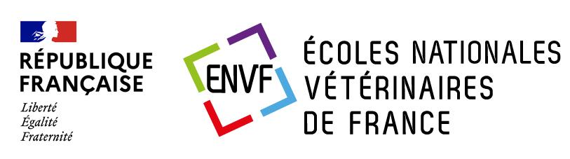 La formation continue vétérinaire dans les ENV